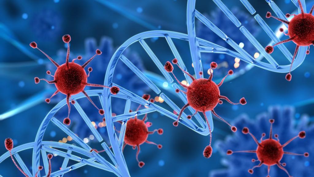 从语言学角度剖析武汉新型冠状病毒